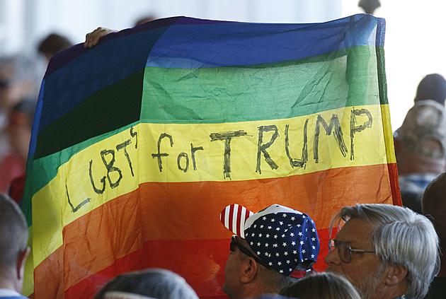 Image result for LGBT work