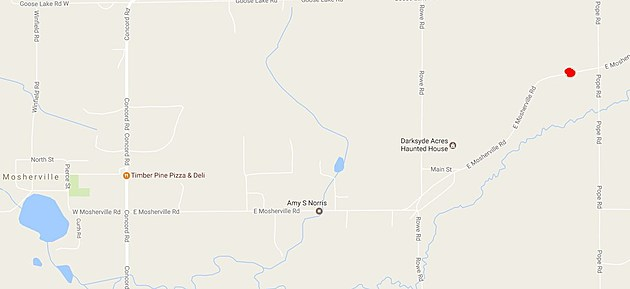 Location of the April 3rd crash in HIllsdale County that injured two people, including  a Tekonsha man. (Source - Google Maps)
