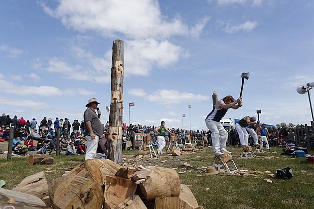Ute Enthusiasts Gather For Annual Deni Ute Muster