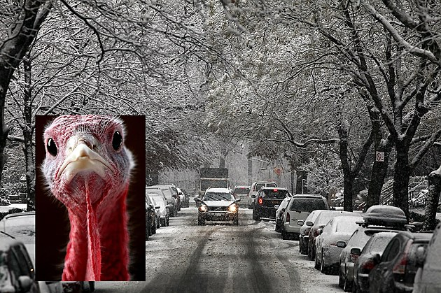 Cold Weather System Brings Snow To New York Area